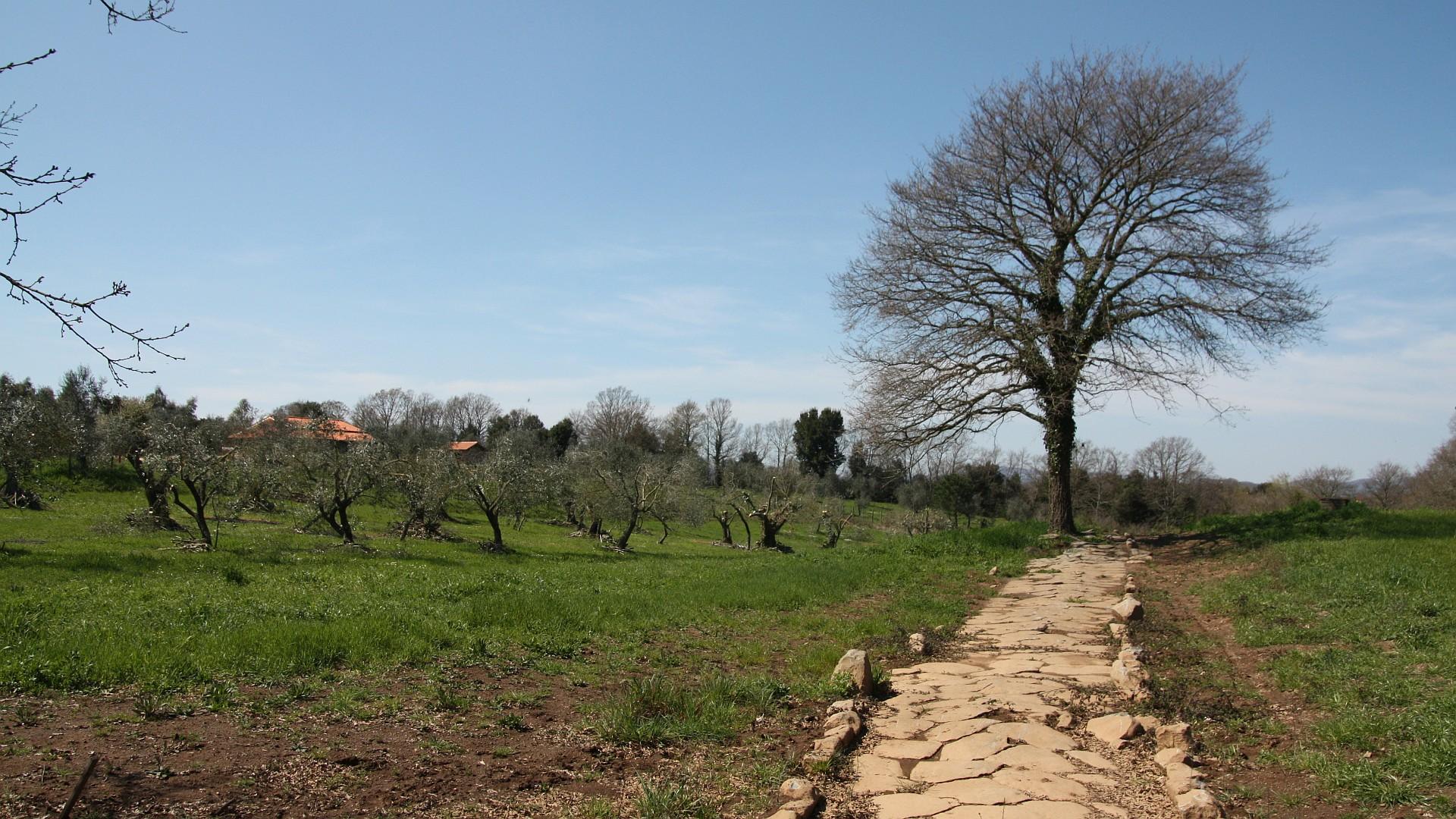 Via Clodia - mit dem Mountainbike nach Rom